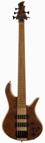 Torillo Volta 5-String Bass Redwood